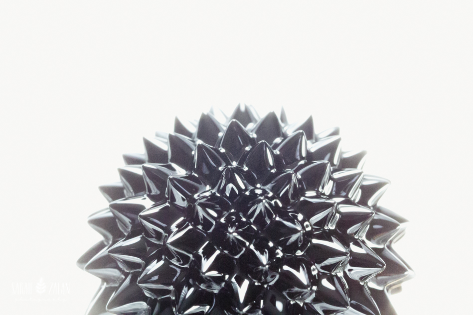 Ferrofluid fun